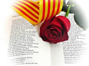 llibre de la llengua catalana: